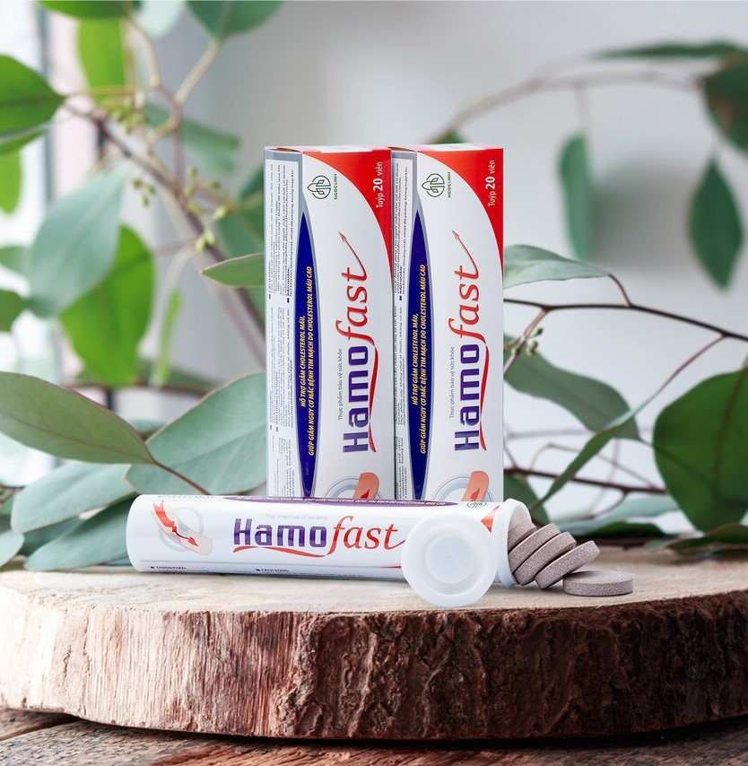 Hamofast - viên uống hỗ trợ giảm Cholesterol máu cao hiệu quả