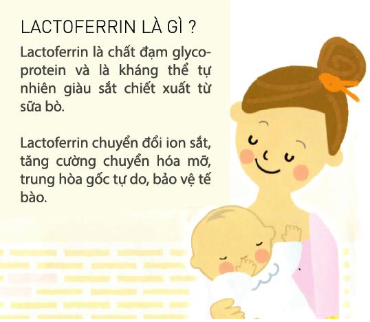 Công dụng sản phẩm lactoferrin Gx