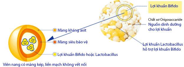 màng bọc khuẩn bifido có trong bifina